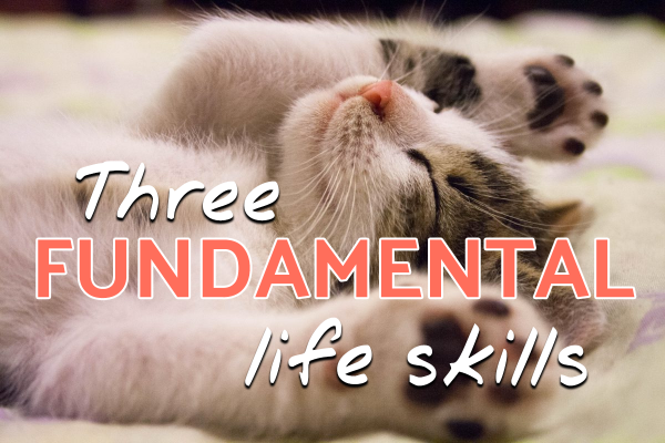 three fundamental life skills