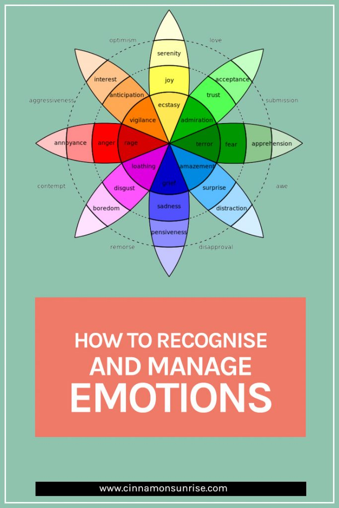 How to recognise and manage emotions to live a calmer, happier life.