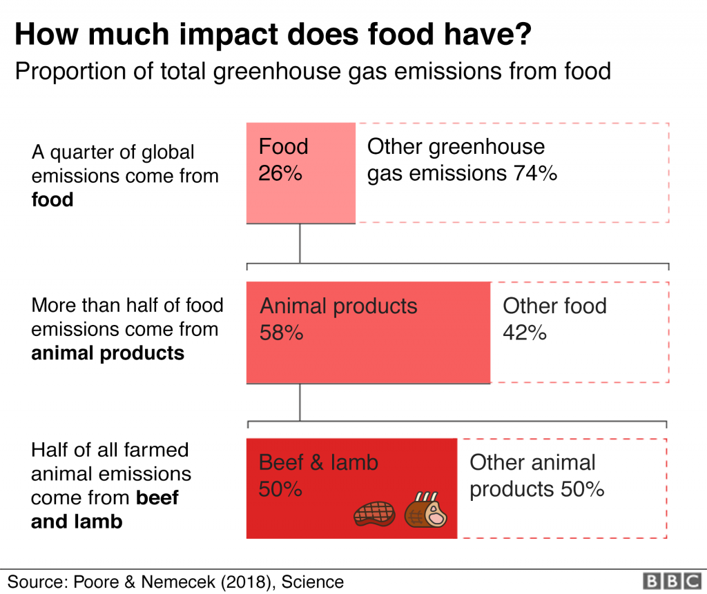 Climate crisis - Total greenhouse emissions from food